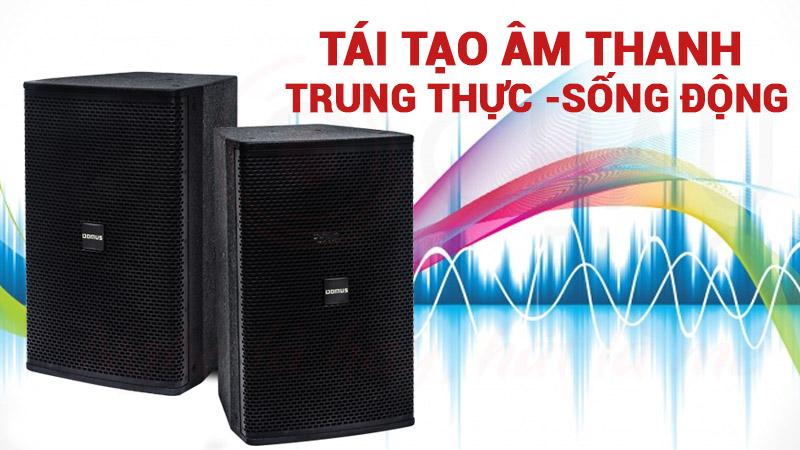 tai-tao-am-thanh-song-dong-voi-loa-domus