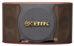 Loa karaoke Bik Bj S 100GL